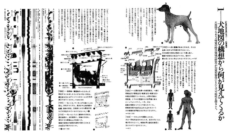 Dog Maps